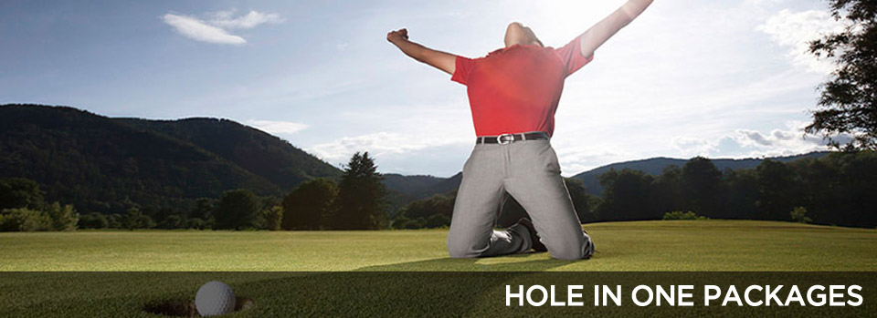 hole-in-one111.jpg